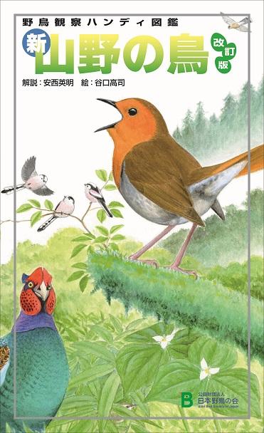 新山野の鳥_改訂版_表紙