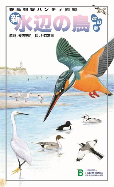 新水辺の鳥_改訂版_表紙