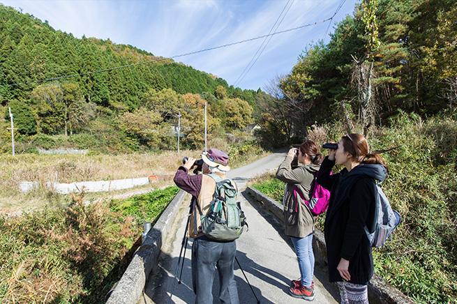 能勢自然体験イベント野鳥